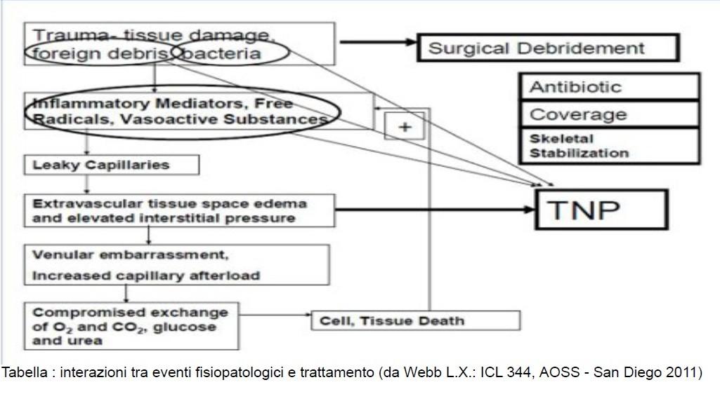 Tabella : interazioni tra eventi fisiopatologici e trattamento (da Webb L.X.: ICL 344, AOSS - San Diego 2011)