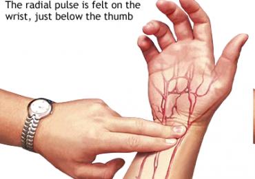 Semeiotica e polso arterioso: qualità e valutazione