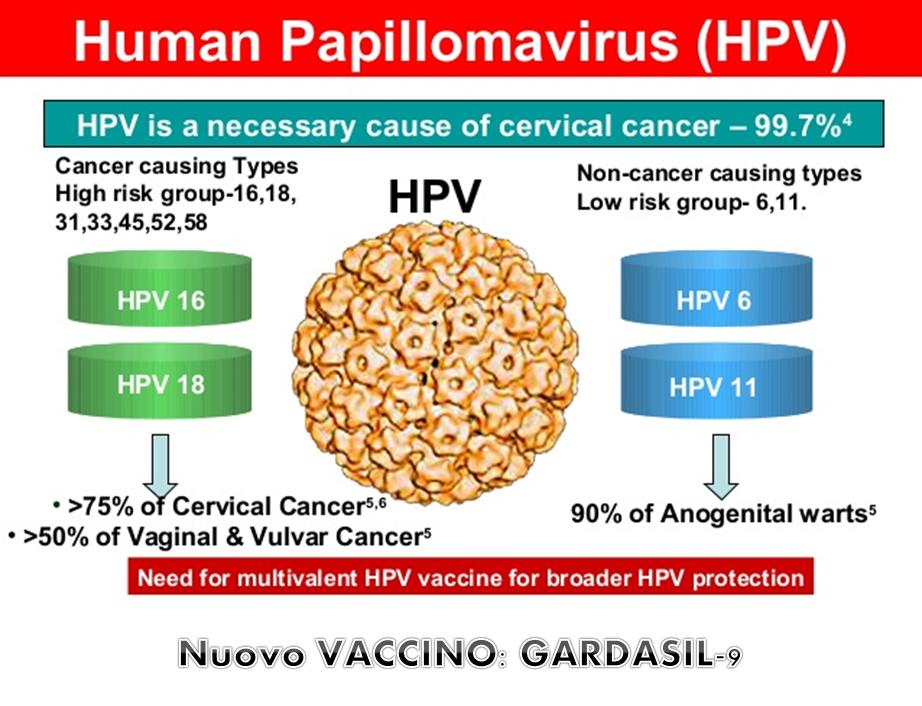Verruche papilloma virus, Vaccino papilloma virus devi essere vergine Hpv vaccino toscana