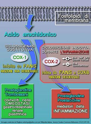 Farmaci Antinfiammatori: cosa sono, impiego ed effetti collaterali in pills