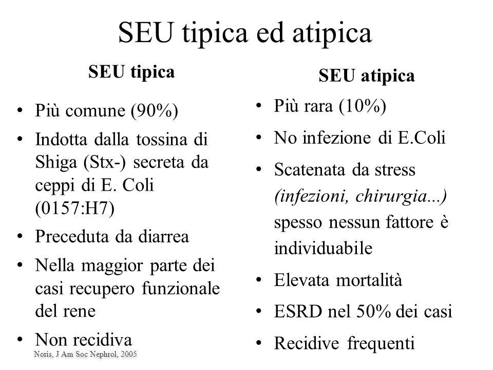 Sindrome Emolitico Uremica (S.E.U.) 1