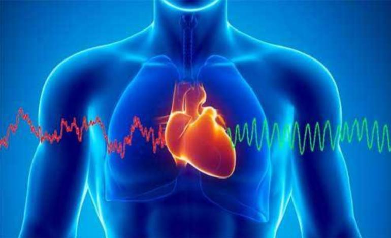 Cuore e cervello: la Coerenza Cardiaca 2