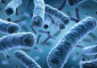 Infezioni ospedaliere, arrivano i disinfettanti a base di batteri