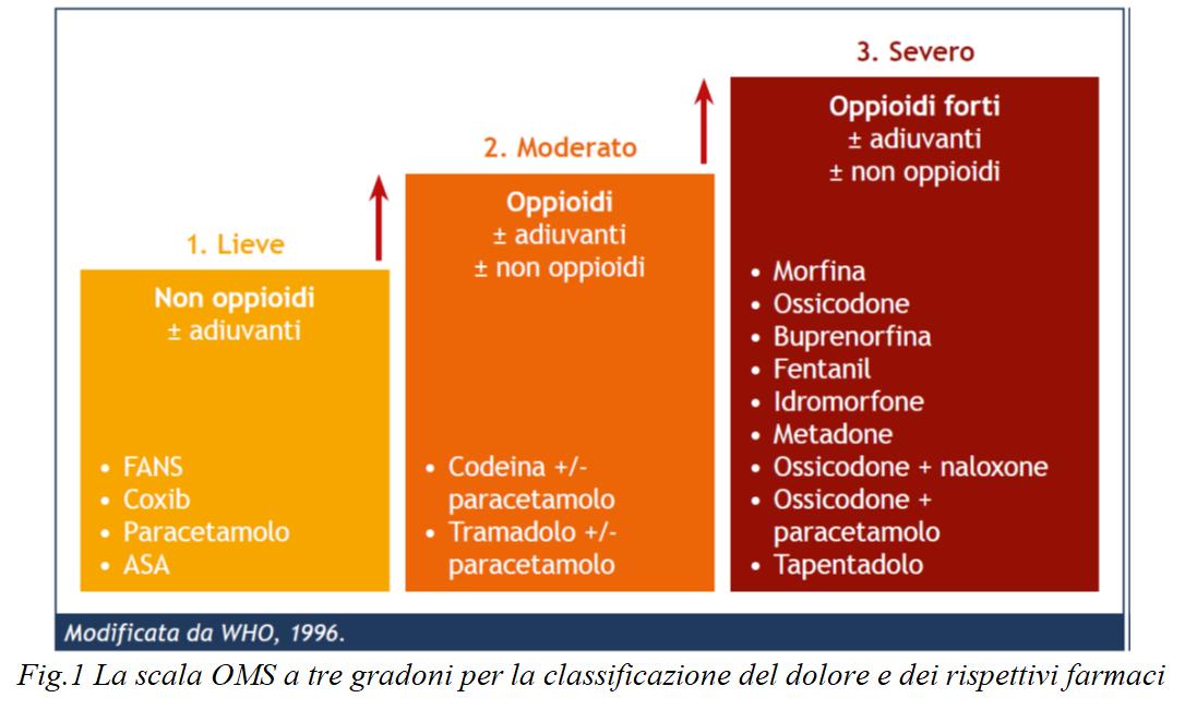 Infermieri In Pillole (#InfermieriInPillole): i farmaci antidolorifici e oppioidi