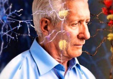 Demenze: l'importanza di prevenire i fattori di rischio