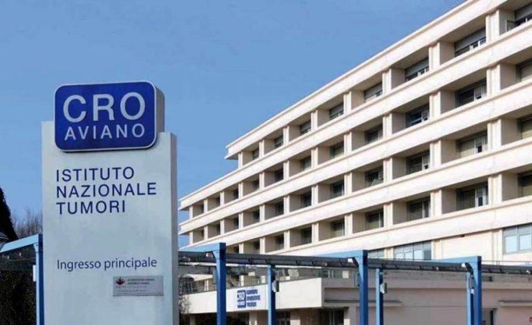 Aviano (Pordenone), niente borsa di studio per la biologa palermitana: discriminazione territoriale?