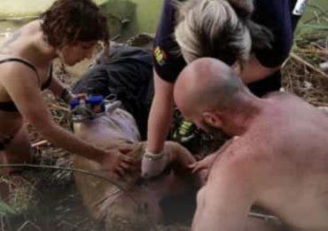 Anziano si lancia nel fiume: Infermiera e OSS fuori servizio gli salvano la vita
