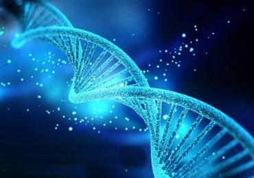 Autismo, scoperte nuove mutazioni del Dna