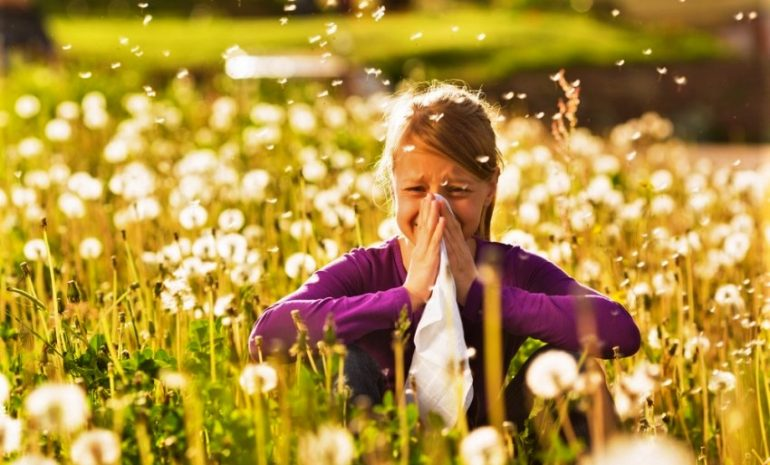 Cambiamenti climatici: in aumento le allergie (e non solo)