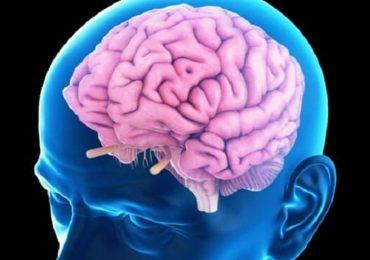 Declino cerebrale: bloccare una proteina per recuperare i deficit legati all'età