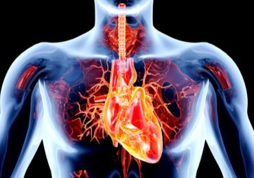 Disfunzioni delle valvole cardiache: solo un italiano su sette ha accesso alle terapie innovative