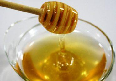 Miele di corbezzolo: una possibile arma contro il cancro al colon