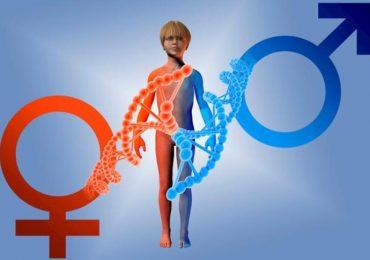 Medicina di genere, cosa cambia col nuovo Piano nazionale