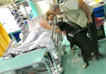 """Prima """"Pet Visiting"""" al Santo Stefano: paziente in rianimazione può così riabbracciare il proprio cane"""