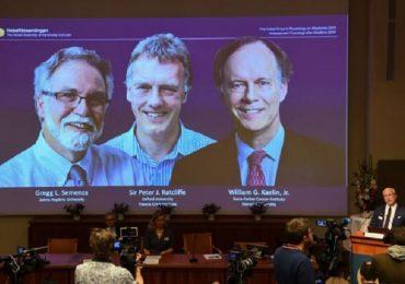 """Medicina, un Nobel per tre: premiate le scoperte sul """"respiro delle cellule"""""""