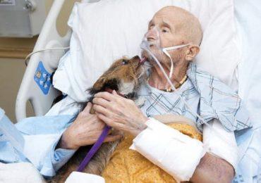 Firenze: uomo colpito da ictus pronuncia le sue prime parole dopo aver incontrato il proprio cagnolino