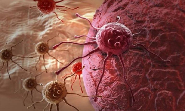 Cellule tumorali come i batteri: possono resistere alle terapie
