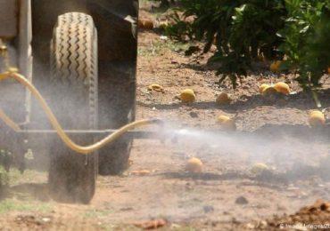 Scatta il divieto Ue al pesticida dannoso per i bambini