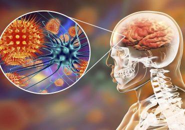 Malattie batteriche invasive: l'approfondimento dell'Iss