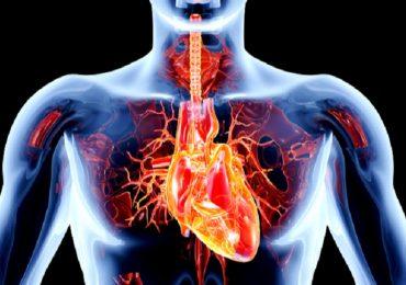 Rigurgito aortico: l'importanza per la prognosi di pressione diastolica e frequenza cardiaca a riposo