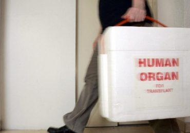 Svizzera, invenzione rivoluzionaria per i trapianti di fegato