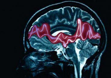 Epilessia e malattie della retina, scoperta molecola che apre la strada a trattamenti più efficaci.