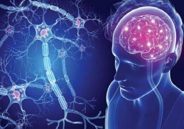 """Regno Unito, sclerosi multipla trattata con staminali: c'è chi parla di """"miracolo""""."""