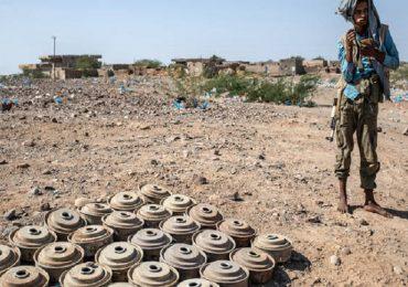 Usa, niente più restrizioni all'uso delle mine antiuomo.