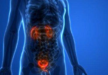 Cancro alla prostata, nuove tecniche di diagnostica per immagini aiutano a valutarne l'estensione.