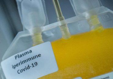 Coronavirus: polemiche sul trattamento con plasma iperimmune