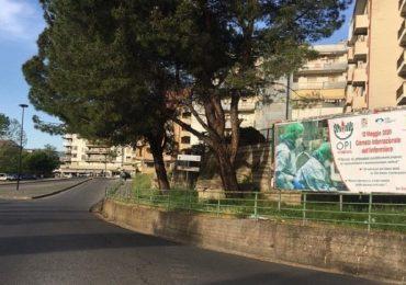 Giornata internazione dell'infermiere, Opi Cosenza distribuisce 4mila igienizzanti