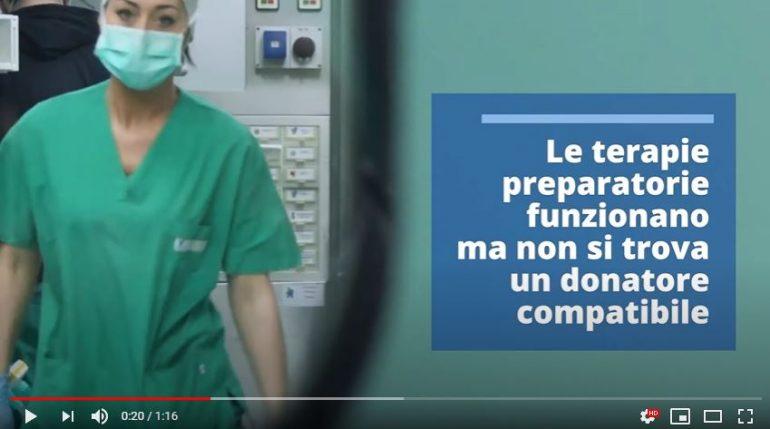 Cellule staminali del papà infuse a bimbo di 6 anni Covid positivo: GUARDA IL VIDEO