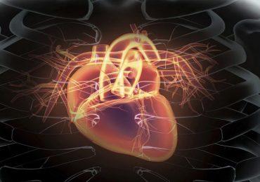 Stenosi aortica bicuspide e sostituzione della valvola transcatetere: buoni risultati con i nuovi dispositivi