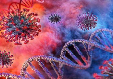 Coronavirus, scoperti nel Dna i fattori di rischio ereditari che causano diversi livelli di gravità