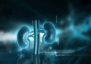 Nefropatia allo stadio finale: allopurinolo non rallenta declino della funzione renale