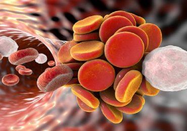 Tromboembolismo venoso, studi dimostrano l'efficacia di edoxaban