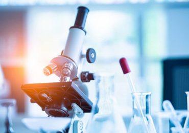 """Cellule staminali con """"superpoteri"""" scoperte negli embrioni umani"""