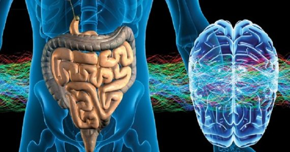 "Studio Usa: ""Sistema nervoso enterico associato a varie malattie"""