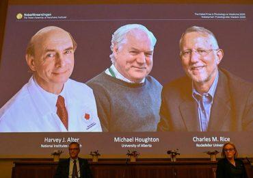 Nobel per la medicina, premiati in tre: hanno scoperto il virus dell'epatite C