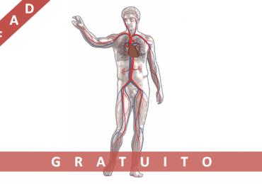 """Corso Fad Ecm gratuito """"Patologie cardiovascolari innovazione in medicina e chirurgia"""""""