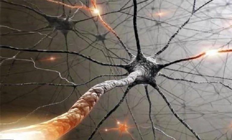 Malattie del sistema nervoso centrale: nuovo studio sull'uso dei biomarcatori