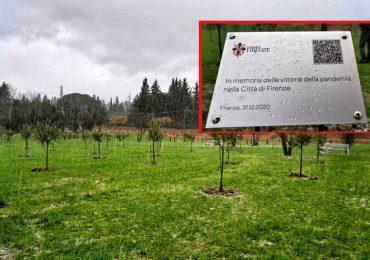 Firenze: nasce un bosco dedicato alle vittime del Covid-19