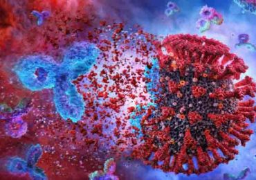 Coronavirus e farmaci anticorpali: Eli Lilly, Vir e GSK uniscono le forze