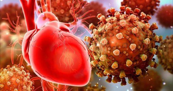 COVID-19 e conseguenze cardiologiche. Gli studi di JAMA Cardiology e  Frontiers in Physiology
