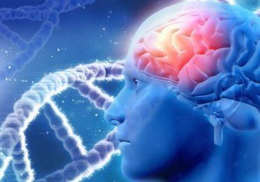 Malattie neurodegenerative incurabili: protocollo innovativo per la scoperta di nuovi farmaci