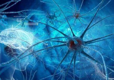 Neoplasie cerebrali: nuovo metodo di sequenziamento del Dna per lo screening