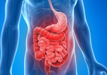 """""""Farmaci biologici efficaci su malattia di Crohn e coliti più resistenti"""""""