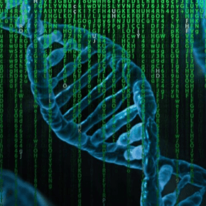 """Genetica, mappati gli """"interruttori"""" del Dna: sarà più facile studiare le malattie"""