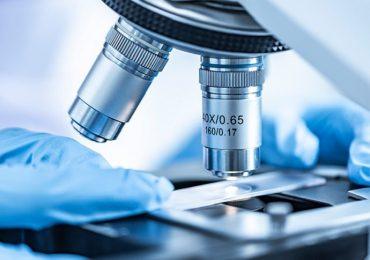 Infezioni da virus, scoperte cellule staminali super efficienti per contrastarle 1