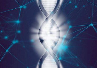 Malattie genetiche, ecco il software che le individua rapidamente